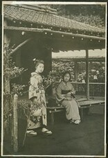 Women in a chrysanthemum garden, Japan.
