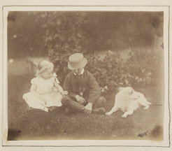 Boy and girl with two dogs